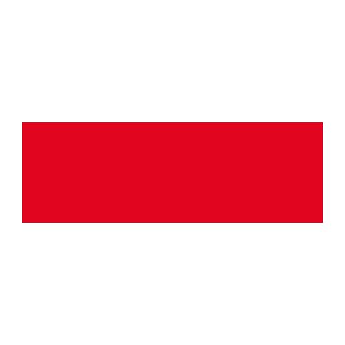 Old max logo